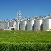 Agriculture near Hazelton